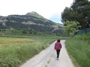 Cami al Puigsagordi
