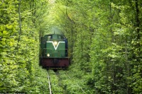 romantic_tunnel3