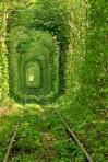 romantic_tunnel5