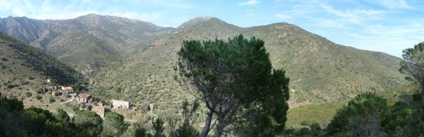 Panoramica11