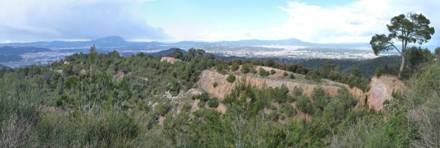 Panoràmica des del Puig d'Olroda