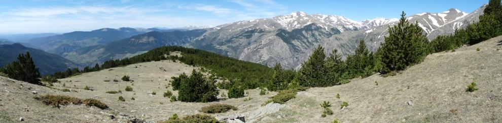 Vall de Ribes i el Puigmal des de l'Atalaiador
