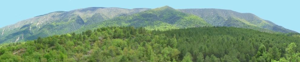 Vista del Montsec de Rúbes des del barranc de Barcedana