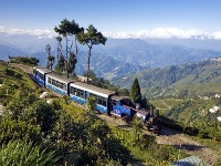 NewJalpaiguri-Darjeeling685_2_PETIT