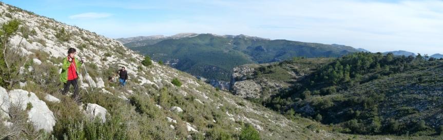 Panorama11