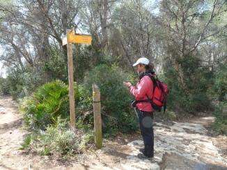 Pal indicador Camins de Tarragona