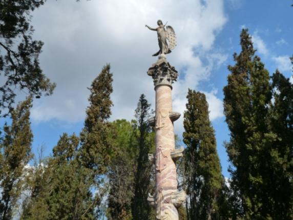 Columna rostral