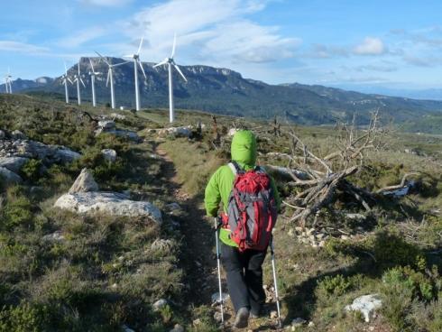 Serra de l'Argentera i Parc Eòlic de Trucafort, amb la Mola al fons