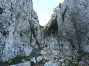 Canal del Mig (Mola Colldejou)
