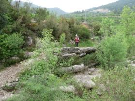 Barranc del Pas al Camí Vell de la Torre