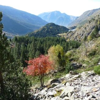 Ruta ST74 Vall del riu Querol (Portè Pimorent)