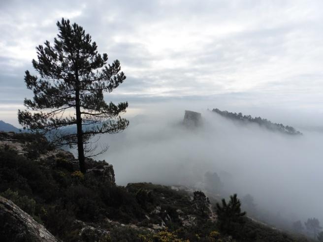 Serra de l'Argentera
