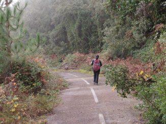 Ruta ST133 Antiga carretera (GR-7)