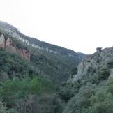 Rojals. La Vall