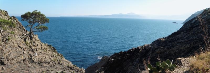 Prop del Cap de Portbou, amb el Cap de Creus al fons