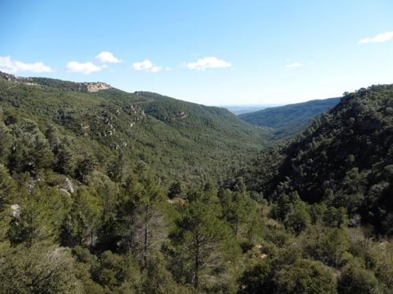 Vall del riu Glorieta des del Mirador