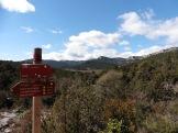Cartell 'Camino Natural'