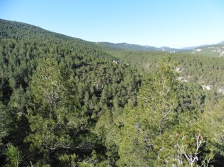 Vall del Brugent