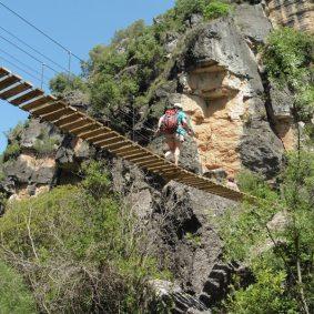 Pont penjat Camí del Brugent