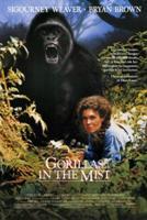 gorilas-en-la-niebla_1988