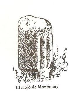 mojo_fita