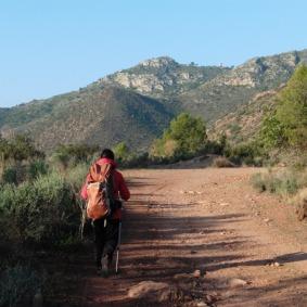 Camí del Pla de Salandó