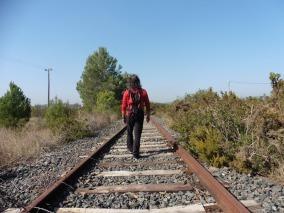Via en desús Roda de Berà-Reus
