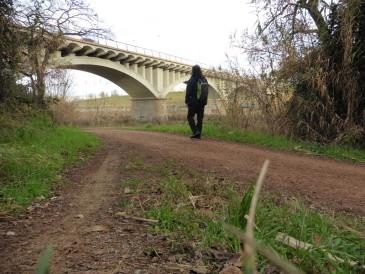 Pont sobre el Besòs (aiguabarreig)