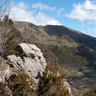 Serra Cavallera