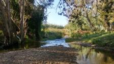 Riu Mogent