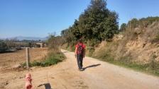 Pel Bosc de Can Ribes