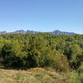 Montserrat al fons