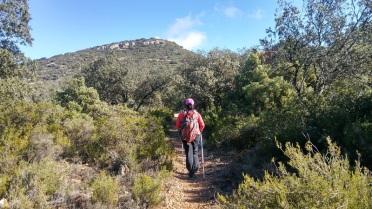 Camí a Montalegre