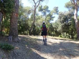 Pujant cap al turó de Castellví