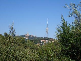Vistes de la Torre de Collserola
