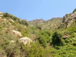 Rec de Sant Onofre