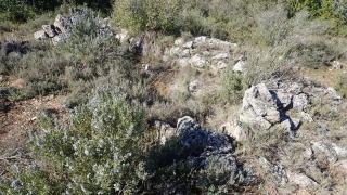 Restes (Monteró 3)