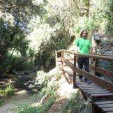 Camí del Rec (Selva del Camp)